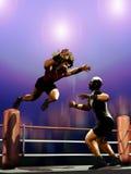 Het worstelen gevecht Royalty-vrije Stock Fotografie