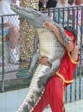 Het Worstelen van de krokodil Stock Foto's