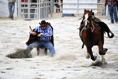 Het Worstelen van de rodeo stock afbeeldingen