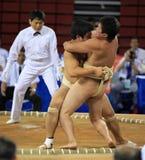 Het worstelen van Sumo Royalty-vrije Stock Foto's