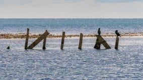 Het Wrak van Minx, Osmington-Baai, Jurakust, Dorset, het UK stock foto