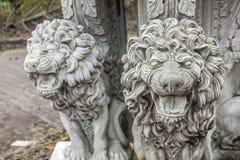 Het wrede leeuwstandbeeld grommen royalty-vrije stock fotografie
