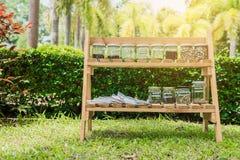 Het zaad in kruiken op houten planken De ecologie behoudt concept Stock Foto's