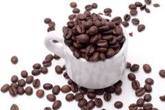 Het zaad van Cofee Stock Afbeelding