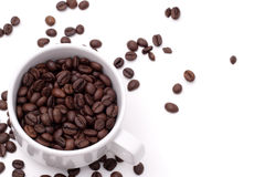Het zaad van Cofee Royalty-vrije Stock Afbeelding
