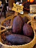 Het zaad van de cacao Stock Afbeeldingen