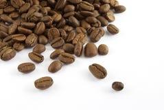 Het zaad van de koffie Royalty-vrije Stock Afbeeldingen