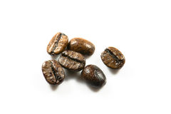 Het zaad van de koffie Stock Afbeeldingen