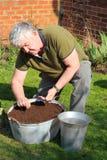 Het zaaien van de bejaarde zaden in container. Royalty-vrije Stock Afbeelding