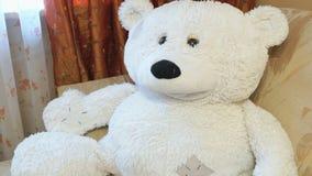 Het zachte mooie polaire wit draagt babystuk speelgoed Close-up stock videobeelden