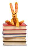Het zachte stuk speelgoed konijn zit op oude boeken Royalty-vrije Stock Foto's