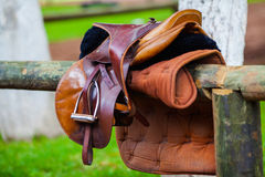Het zadel van het luxeleer voor paardrijden Stock Fotografie