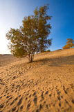 Het zand royalty-vrije stock afbeeldingen