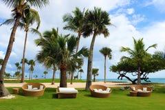 Het zand en de oceaan van strandpalmen in tropisch paradijs stock foto's