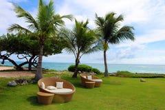 Het zand en de oceaan van strandpalmen in tropisch paradijs royalty-vrije stock afbeeldingen