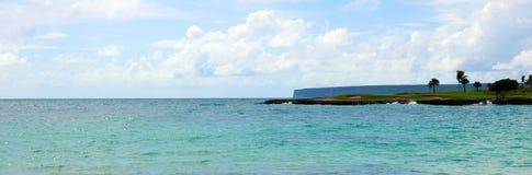 Het zand en de oceaan van strandpalmen in tropisch paradijs stock afbeelding