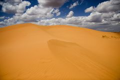 Het zandduin van Coralpink Stock Afbeelding