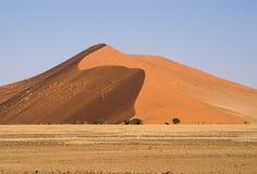 Het zandduin van de woestijn Stock Foto's