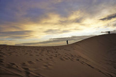 Het zandduin van Vietnam Stock Foto