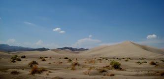 Het zandduinen van de woestijn Stock Foto