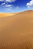 Het zandduinen van de woestijn in Maspalomas Gran Canaria stock fotografie