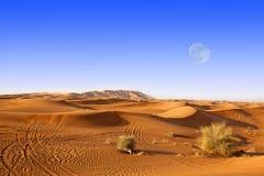 Het zandduinen van Doubai Royalty-vrije Stock Afbeelding