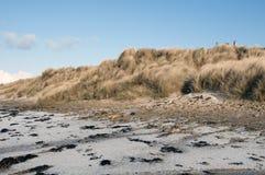 Het zandduinen van Dunnet royalty-vrije stock foto