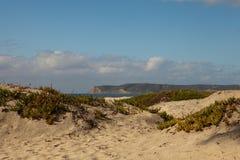 Het Strand van het Eiland van Coronado royalty-vrije stock fotografie