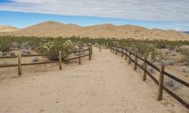 Het zandduinen van Kelso in het Nationale Domein van Mojave stock foto's