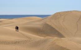 Het zandduinen van Maspalomas Royalty-vrije Stock Fotografie