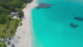 Het zandige strand van havenorly met palmen, Espiritu Santo Island, Vanuatu stock footage
