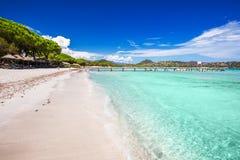 Het zandige strand van Santa Gulia met pijnboombomen en azuurblauw duidelijk water, Corsica, Fran royalty-vrije stock foto's