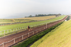 Het Zandspoor van Jockeys van raspaarden Opleiding Stock Foto