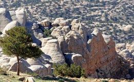Het zandsteen met typische wol doet verwering bij de rand van Dana Biosphere Reserve, Jordanië in zakken stock foto's