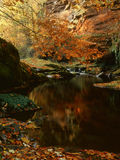 Het zandsteenklippen van Gelt van de rivier, de herfst Royalty-vrije Stock Foto