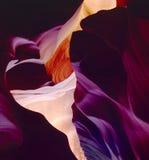 Het Zandsteenmuren van de antilopecanion Stock Afbeeldingen
