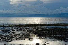 Het zeewater gaat in de Middag achteruit Stock Foto's