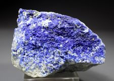 Het zeldzame Blauwe Minerale Specimen van Hauyne stock foto's