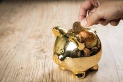 Het zetten van a1-dollarmuntstuk in een spaarvarken Stock Fotografie