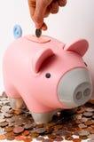 Het zetten van Geld in het Spaarvarken Stock Afbeelding