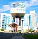 Het Ziekenhuis van Golisanochldren Stock Fotografie