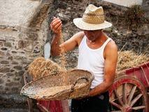 Het ziften - traditionele landbouwdemonstratie Stock Fotografie