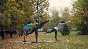 Het zijaanzicht van drie slanke meisjes die yoga in park het praktizeren het in evenwicht brengen doen oefent zich status op één  stock video