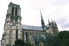 Het zijaanzicht van Notre Dame Cathedral Stock Afbeelding