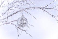Het zilveren & Duidelijke Ornament van Kerstmis op Tak Stock Afbeelding