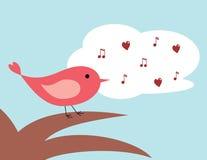 Het zingen van de vogel Stock Foto's