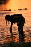 Het zoeken naar Shells bij Zonsondergang royalty-vrije stock fotografie