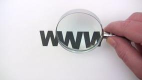 Het zoeken van het Web stock footage