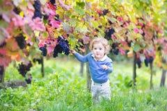 Het zoete babymeisje spelen in de werf van de de herfstwijnstok Stock Fotografie