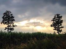 Het zonlicht doordringt de wolken om tot humeurige verlichting op een visserijpijler bij schemer te leiden Royalty-vrije Stock Afbeelding